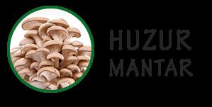 Huzur Mantar