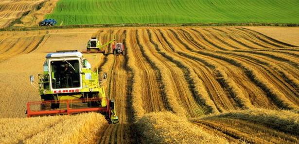 Allah'a şükür tarımsal kuraklık kalmadı.
