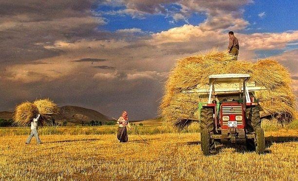 Çiftçilerimizin kullandığı mazotun yarısı